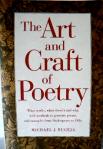 Art & Craft of Poetry - Bugeja