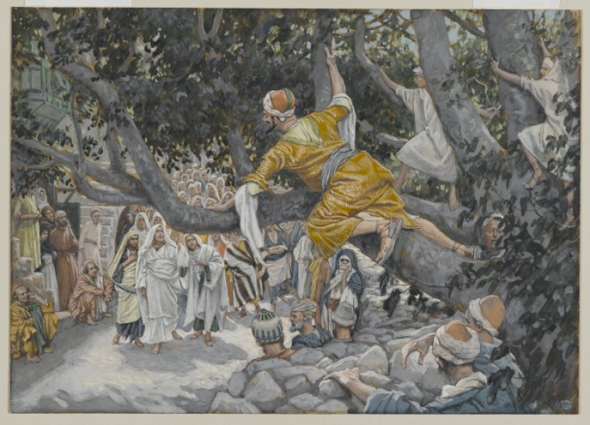 Zaccheus in the sycamore tree by James Tissot