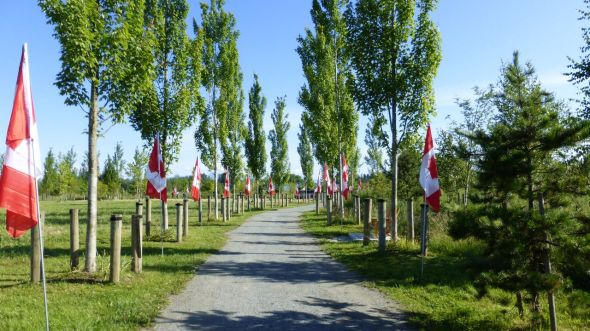 Canadian flags line walk