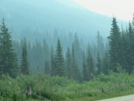 Smoke amongst the pines - Hwy 1 between Golden and Kamloops, July 16, 2017 (Photo © 2017 by V. Nesdoly