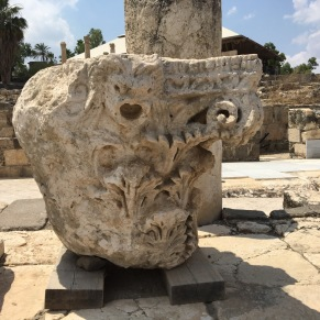A capital unearthed at Beit Shean. (Photo © 2019 by V. Nesdoly)