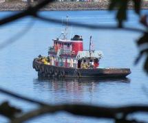 Boat in Bellingham Bay (© 2016 by V. Nesdoly)