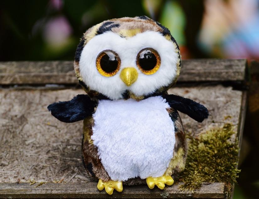 owl-845256_1280