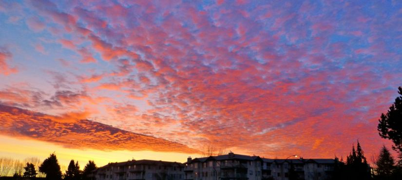 Pink clouds reflecting sunrise
