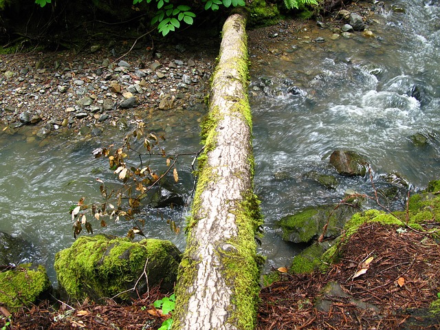 stream-71625_640