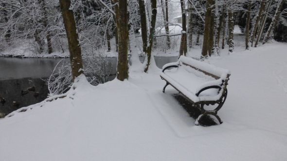 Snowy park bench