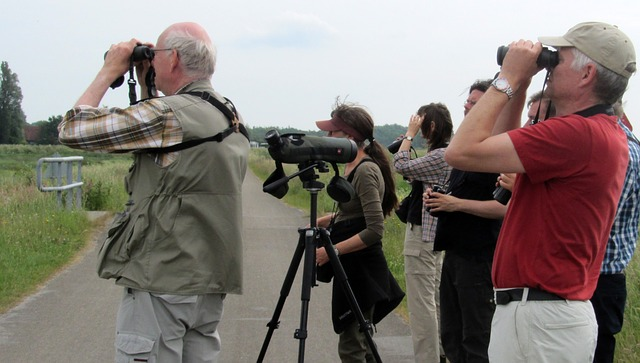 bird-watchers-1321539_640