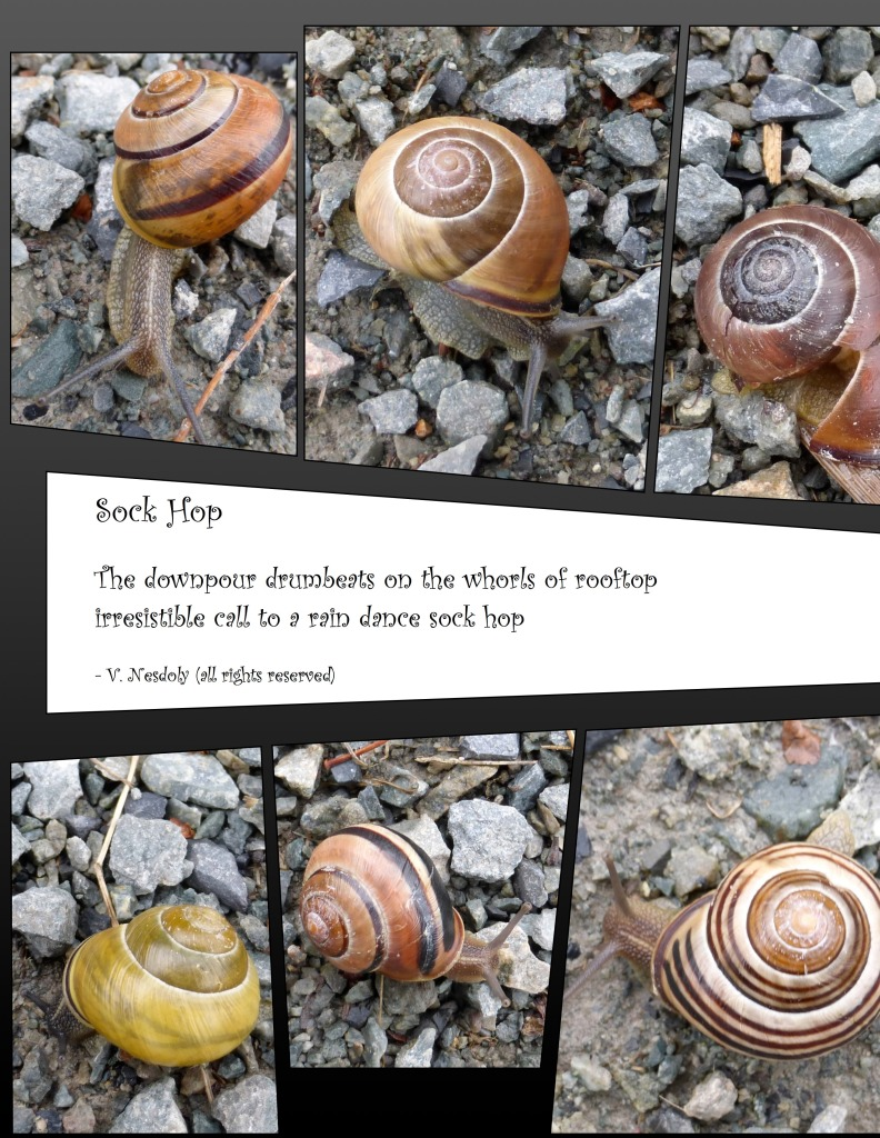 Sock Hop poem with snail collage